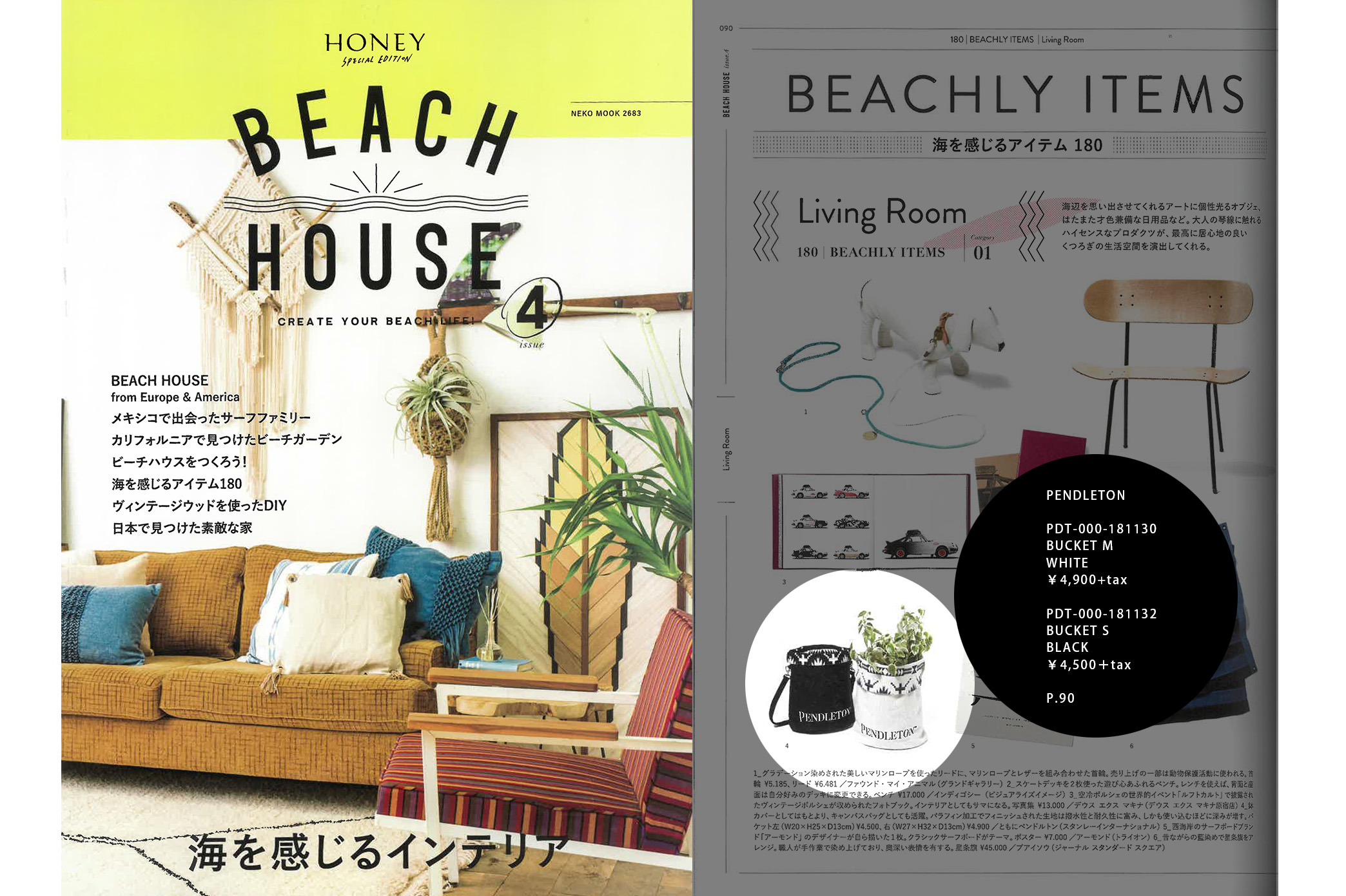 BEACH_HOUSE_4issue
